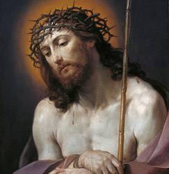 Imagen de Oraciones de preparaci�n y de agradecimiento para cada Hora
